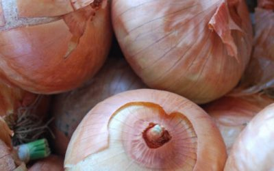 Love them or hate them the Onion is full of wonderful nutrients!