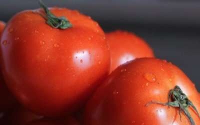 British Tomato Week and Understanding Tomato Intolerances