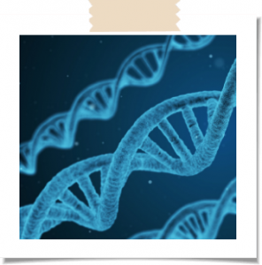Helix 296x300 - The Benefits of DNA Testing