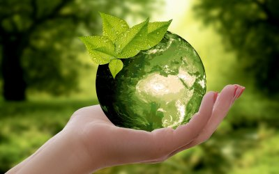 7 Recycling Tips to reduce your carbon footprint