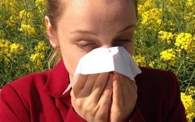 Do I Have Seasonal Allergies or a Cold?