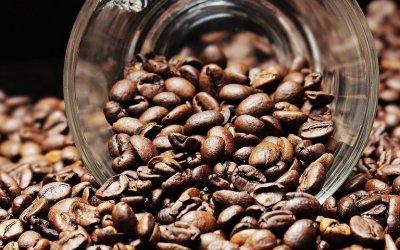 How to identify Caffeine Intolerance