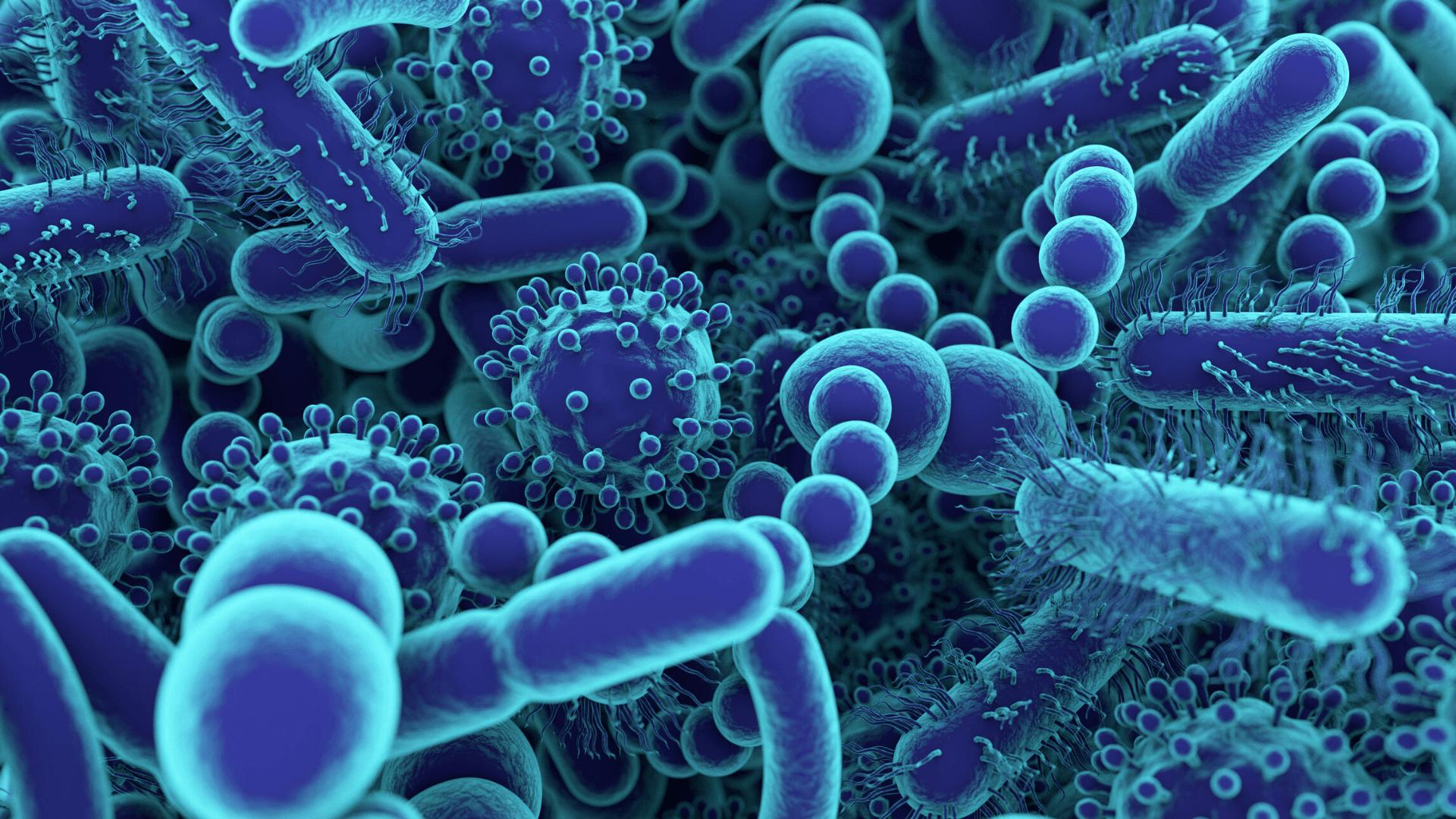 Probiotics Student Internships