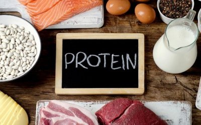 We've All Been Lied to About Protein