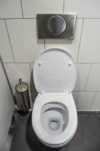 toilet urine test